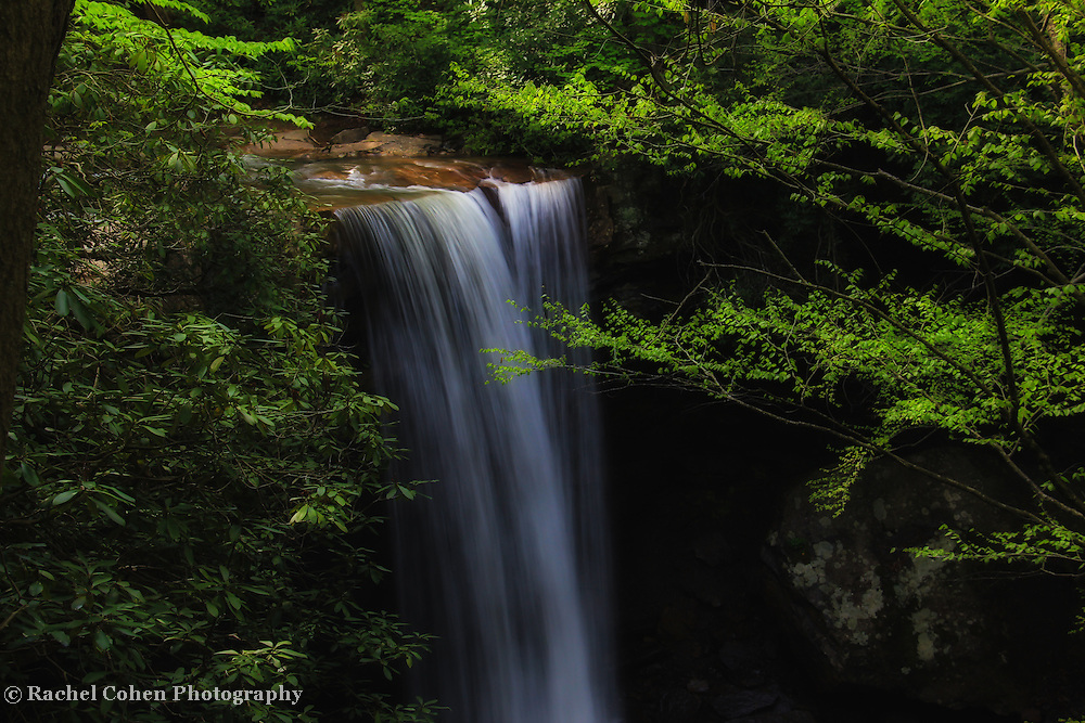 """""""Cucumber Falls"""" 4 <br /> <br /> A wonderful calm and dreamy scenic waterfall in Ohiopyle State Park!!<br /> <br /> Waterfalls by Rachel Cohen"""