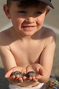 A five-year-old boy shows off two snails he found while beach-combing on Cape Cod Bay near Payne's Creek, Brewster, Massachusetts.