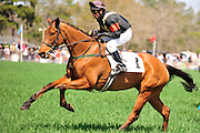 27 March 2010 : Eventual winners Richard Boucher and Class Deputy clear a hurdle in the Camden Plate Maiden Hurdle race.
