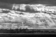 Sunlight and clouds over the Black Dirt fields of Pine Island on Feb. 27, 2020