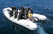 ECUADOR, GALAPAGOS scuba divers diving off Wolf Island