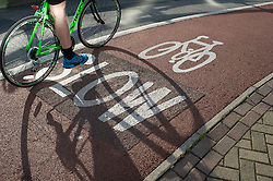Cyclist on a cycle lane displaying 'Slow' sign, Sheffield