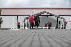 139, Quando van de Helle<br /> Hengstenkeuring BWP- Azelhof - Lier  2021<br /> <br /> © Hippo Foto - Dirk Caremans<br /> 12/04/2021