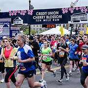 Some of the runners at the start of the 2012 Cherry Blossom 10-Miler, the 40th running of the race that is run every spring in Washington DC to coincide with the National Cherry Blossom Festival. The course starts near the Washington Monument, heads over Memorial Bridge and back, goes up under the Kennedy Center, around the Tidal Basin and past the Jefferson Memorial, and then does a loop around Hains Point back to the finish near the Washington Monument.