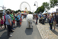 Die Greenpeace-Eisbärin Paula, der ihre Heimat, die Arktis, unter den Tatzen wegschmilzt, hat sich auf den langen Weg nach Deutschland begeben.