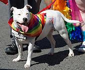 Brighton Pride 6th August 2016