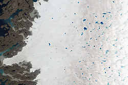 """By mid-summer each year, vibrant blue meltwater lakes dot the surface of the Greenland Ice Sheet. These lakes, also known as melt ponds, store a large amount of fresh water throughout the season, and they are an important part of the ice sheet's surface hydrology.<br /> The images above were acquired on July 15, 2015, by the Operational Land Imager (OLI) on Landsat 8. They show meltwater lakes on the ice near Greenland's west coast, about 100 kilometers (60 miles) southeast of Ilulissat. Dark debris coats the ice surface in some areas.<br /> """"One reason we're interested in the lakes is because they might be important for speeding up the ice sheet,"""" said Allen Pope, a glaciologist at the National Snow and Ice Data Center. Once the lakes grow large enough, Pope notes, they can force open crevasses in the ice. The melt water can then move through the crevasse to the base of the glacier and temporarily speed up ice flow across the bedrock below.<br /> Ultimately, the flowing ice will reach one of the many outlet glaciers that line Greenland's coast. Nordenskiöld Glacier, for example, is visible in the top image. Greenland's fastest-moving glacier, Jakobshavn, is immediately north of this image. Glaciers like these are the gateway through which ice can exit the ice sheet, enter the ocean, and contribute to<br /> sea level rise.<br /> So how large are these lakes? As the bottom, close-up image shows, size varies. Some lakes have a greater surface area than others, but that's not the only difference. Their depth can vary dramatically too, which becomes apparent in the various shades of blue.<br /> """"Intuitively, you see this beautiful blue color, and you know the darker the blue, the deeper the lake,"""" Pope said while describing an image of the same area as it appeared in summer 2014. """"Which is nice, but we want to be able to quantify that.""""<br /> According to Pope, some lakes are shallow and lagoon-like, while others are as much as 9 meters (30 feet) deep. Pope and colleagu"""