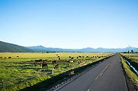 Klamath Lake valley area, Oregon.