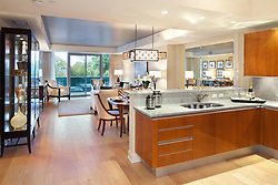 1881 Nash, Arlington, Virginia Turnberry Tower condominiums Kitchen