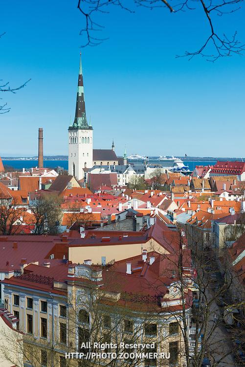 Old town rooftops and Oleviste church in Tallinn, Estonia