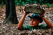 """A Vietnamese Army soldier pops up from a """"spider hole"""" that, during the Vietnam War, Vietcong guerrillas used to attack American soldiers of the 25 Infantry Division near Chu Chi northwest of Saigon. © Steve Raymer / National Geographic Creative"""