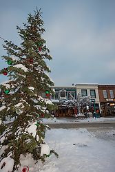 """""""Snowy Christmas Tree in Truckee 5"""" - This snow covered Christmas tree was photographed in Downtown Truckee, California."""