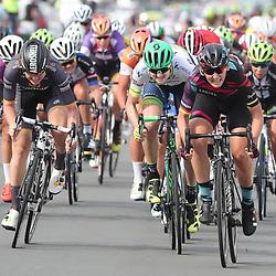 03-09-2016: Wielrennen: Ladies Tour: Tiel <br /> <br /> TIEL (NED) wielrennen  <br /> Lisa Brennauer heeft de vijfde etappe van de Boels Rental Ladies Tour gewonnen. De Duitse van Canyon-Sram toonde zich in Tiel de snelste van het peloton.Loren Rowney (Orica-AIS) was tweede, Jolien D'hoore derde. Op de vierde plaats was Nina Kessler de beste Nederlandse.