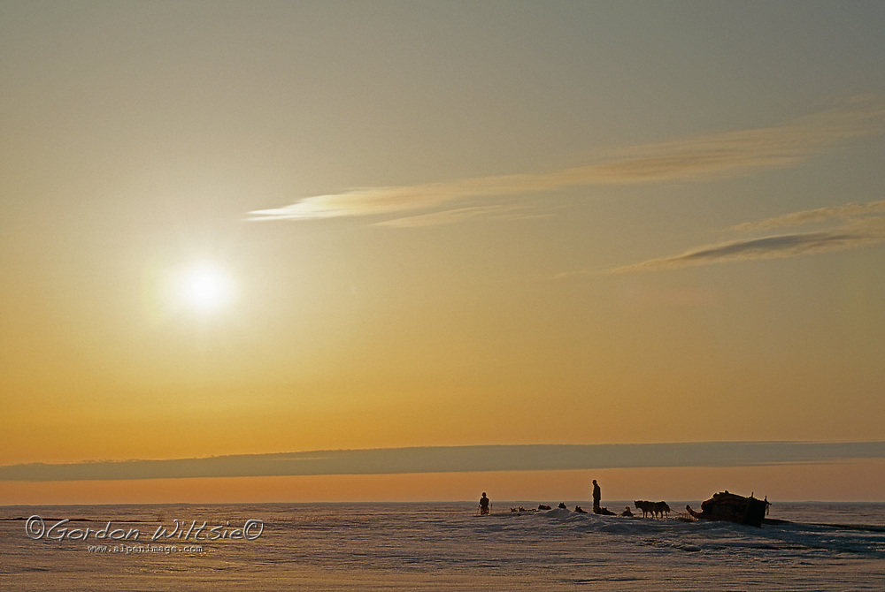 A dog sled team stops for bearings on the frozen Arctic Ocean, Northwest Territories, Canada.