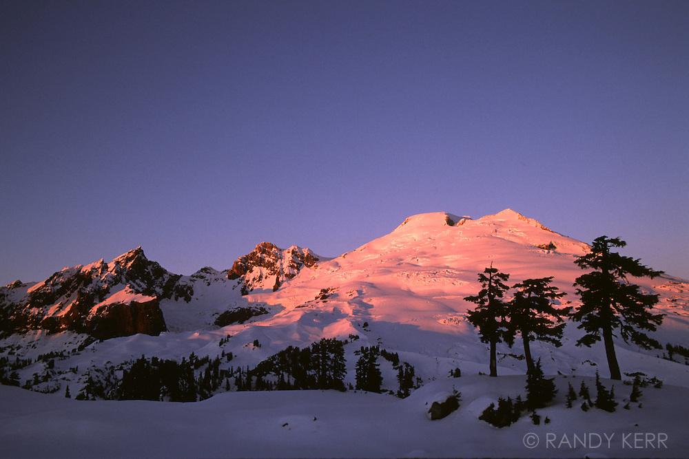 Mount Baker from the three tree tarn
