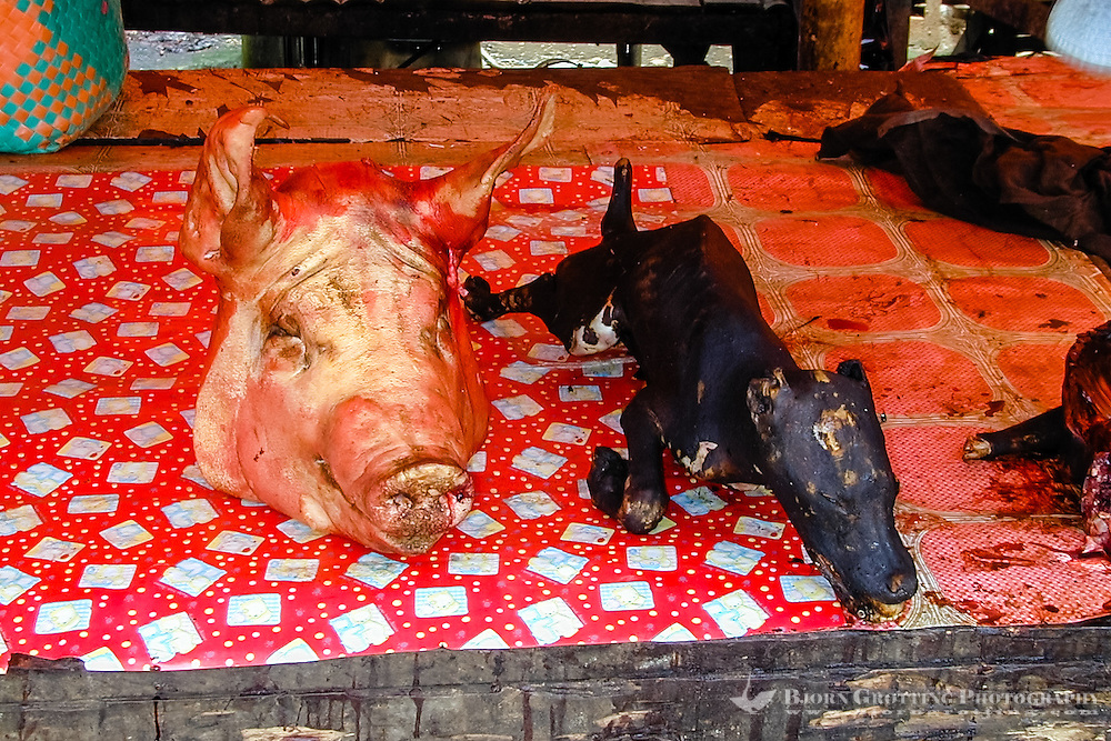 Indonesia, Sulawesi, Tomohon. Tomohon's market is a meeting place for the Minahasans. People come from all over the Minahasa region to buy and sell food and other goods. Some may call parts of the assortment bizarre. Here a pig's head and a dog.