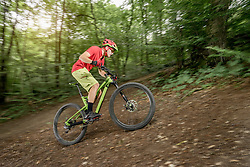Mountain biker riding uphill in forest, Bavaria, Germany