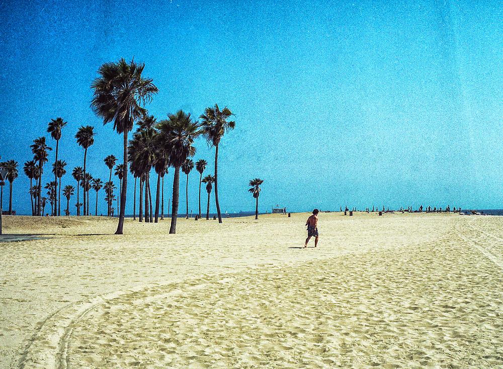 Venice Beach Landscape