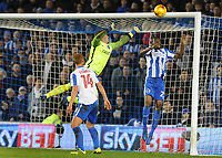 Football - 2016 / 2017 Sky Bet [EFL] Championship - Brighton & Hove Albion vs. Newcastle United<br /> <br /> Newcastle first goal - The ball flies into the top corner of the net past goalkeeper David Stockdale and Fikayo Tomori of Brighton at The Amex Stadium.<br /> <br /> COLORSPORT/ANDREW COWIE