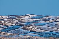 Kalamaili National Nature Reserve, Xinjiang, China