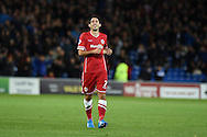 Peter Whittingham of Cardiff city celebrates after he scores his teams 1st goal to make it 1-1.Skybet football league championship match, Cardiff city v Ipswich Town at the Cardiff city stadium in Cardiff, South Wales on Tuesday 21st October 2014<br /> pic by Andrew Orchard, Andrew Orchard sports photography.