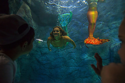 August 14, 2017 - SâO Paulo, São Paulo, Brazil - Visitors watch several mermaids while they swim in a giant tank during a show at an aquarium in Sao Paulo, Brazil, on August 14, 2017. (Credit Image: © Cris Faga via ZUMA Wire)