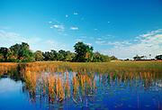 Okavango Delta in Botswana, Africa