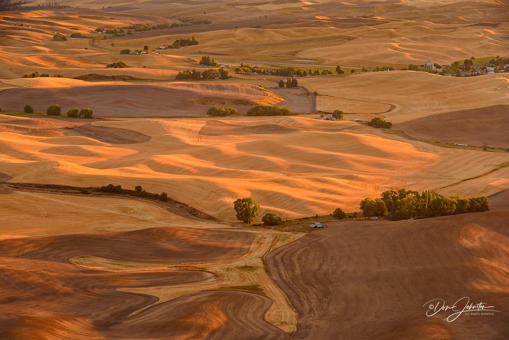 Palouse landscape in late summer from a high viewpoint, Steptoe Butte State Park, Washington, USA