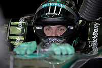 ROSBERG NICO (GER) - MERCEDES GP MGP W05 - AMBIANCE PORTRAIT during the 2014 Formula One World Championship, Brazil Grand Prix from November 6th to 9th 2014 in Sao Paulo, Brazil. Photo Eric Vargiolu / DPPI.