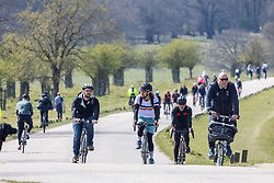 Licensed to London News Pictures. 18/04/2021. London, UK. Cyclists soak up the sunshine in Richmond Park South West London on the first weekend of the easing of Covid-19 restrictions. Shops, pubs, bars and restaurants are now serving customers for the first time in over 4 months as a mini heatwave is set to hit the UK this week with temperatures predicted to reach up to 18c in London and the South East. Photo credit: Alex Lentati/LNP
