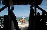 Camel ride at Bamburi Beach in Mombasa, Kenya on Thursday, May 11, 2006.