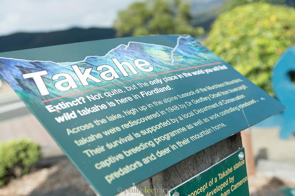 Description of sculpture of a takahe, an endemic endangered flightless bird, Te Anau, South Island, New Zealand