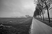 Landscape of plowed fields, a road, farms and rows of trees in the mist // Mistig landschap met omgeploegde akkers, een weg, rijen bomen en boerderijen.