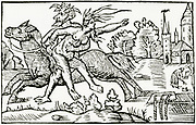 'The Devil carrying off the Witch of Berkeley, England, c1045.  Woodcut from ''Historia de gentibus septentrionalibus'', Rome, 1555, by Olaus Magnus.'