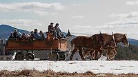"With just a scant amount of snow left on the ground it felt more like ""Spring Fest"" rather than Winter Fest at Prescott Farm Saturday afternoon.  Folks enjoyed the warm temperatures while taking a horse drawn sleigh ride provided by the Swain family of Heritage Farms as part of the days festivities. (Karen Bobotas/for the Laconia Daily Sun)"