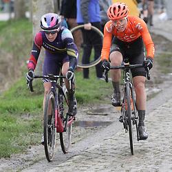 29-02-2020: Wielrennen: Omloop Nieuwsblad: Ninove: Tiffany Cromwell: Sofia Bertizzolo