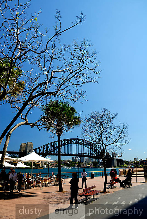 Harbour-side restaurant, with Sydney Harbour Bridge in background. Circular Quay, Sydney, Australia