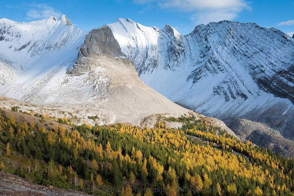 Autumn Splendor, Kananaskis Country, Alberta