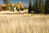 farmhouse in autumn, Klickitat County, WA, USA
