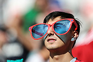 Fan during the 2018 FIFA World Cup Russia, Group C football match between Denmark and France on June 26, 2018 at Luzhniki Stadium in Moscow, Russia - Photo Tarso Sarraf / FramePhoto / ProSportsImages / DPPI