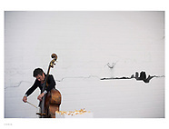 double bass | performance