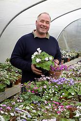 John Massey of Ashwood Nurseries with his hepatica collection