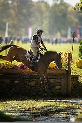Seabra Duarte (POR) - Albano Z<br /> Cross country 6 years old horses<br /> Mondial du Lion - Le Lion d'Angers 2014<br /> © Dirk Caremans<br /> 18/10/14