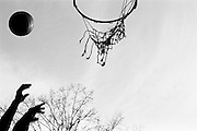 """April 10th 2005. New York, New York. United States..Located in the heart of Greenwich Village, the West 4th Street basketball Court, known as """"The Cage"""", offers no seating but attracts the best players and a lot of spectators as soon as spring is around the corner..Half the size of a regular basketball court, it creates a fast, high level of play. The more people watch, the more intense the games get. « The Cage » is a free show. Amazing actions, insults and fights sometimes, create tensions among and inside the teams. The strongest impose their rules. Charisma is present..""""The Cage"""" is a microcosm. It's a meeting point for the African American street culture of New York. Often originally from Jamaica or other islands of the Caribbean, they hang out, talk, joke, laugh, comment the game, smoke… Whether they play or not, they're here, inside """"The Cage"""". Everybody knows everybody, they all greet each other, they shake hands and hug: """"Yo, whasup man?"""""""