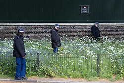 © Licensed to London News Pictures. 11/05/2021. London, UK. Police officers search a section of foliage on the Mall ahead of the state opening of Parliament . Photo credit: George Cracknell Wright/LNP