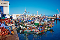 Maroc, Casablanca, port de peche // Morocco, Casablanca, fishing harbour