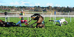 Sharjah ridden by jockey Patrick Mullins and Real Steel ridden by Paul Townend both fall at the last during day two of the Leopardstown Christmas Festival at Leopardstown Racecourse.