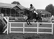 "07/08/1980<br /> 08/07/1980<br /> 07 August 1980<br /> R.D.S. Horse Show: John Player Top Score Competition, Ballsbridge, Dublin.Nelson Pessoa (Brazil) on ""Moet Et Chandon Genet D'Or""."