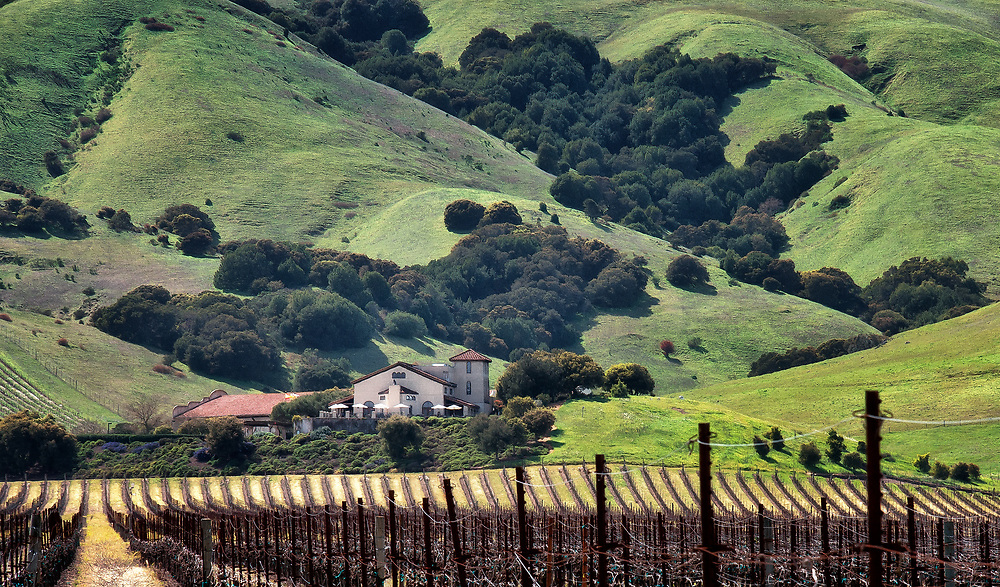 SUBJECT: Winery IMAGE: Beneath the rolling hills with their gullies, woods and cow trellises, a winery sits with its acres of vinyards on the valley floor, bathed in sunlight