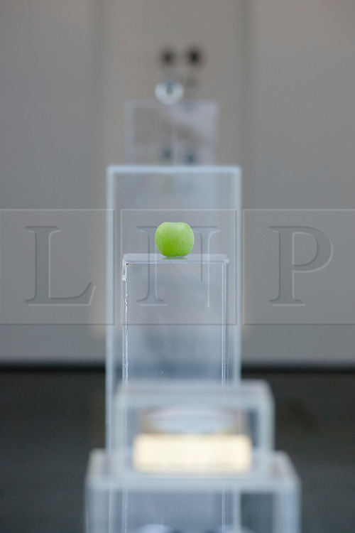 © Licensed to London News Pictures. 18/06/2012. LONDON, UK. Yoko Ono's 'Apple' (1966) is seen amongst other pieces of the artist's work at the Serpentine Gallery in London today (18/06/12).The exhibition, entitled 'To The Light', is the artists first London based exhibition in more than a decade, including pieces featuring her late husband John Lennon and is set to run from 19th of June to 9th of September 2012. Photo credit: Matt Cetti-Roberts/LNP